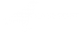 RabeSoft – mobile / www apps